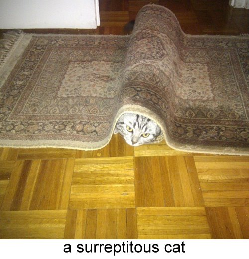 surreptitious_cat